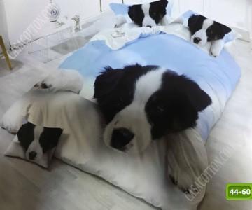5D спално бельо с код 44-60